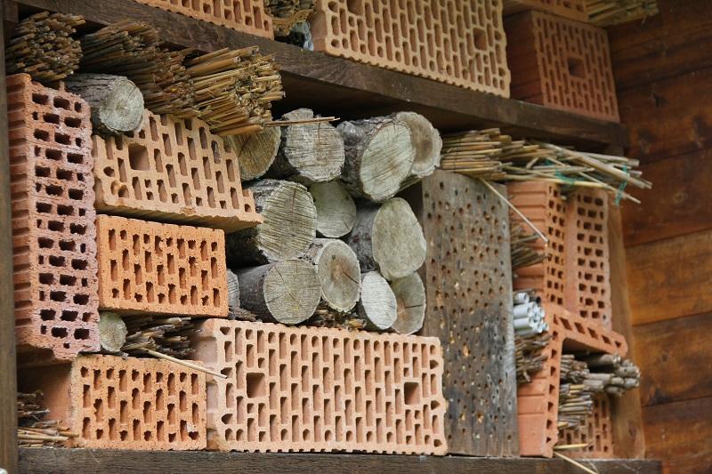 Zoo-oder-Tierpark-BineLovesLife-Bienenhotel