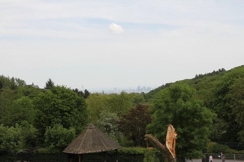 Zoo-oder-Tierpark-BineLovesLife-SkylineFFM