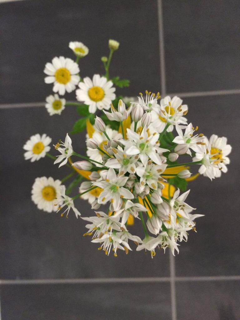Der-perfekte-Hochzeitsstrauss-Gartenblumen-BineLovesLife