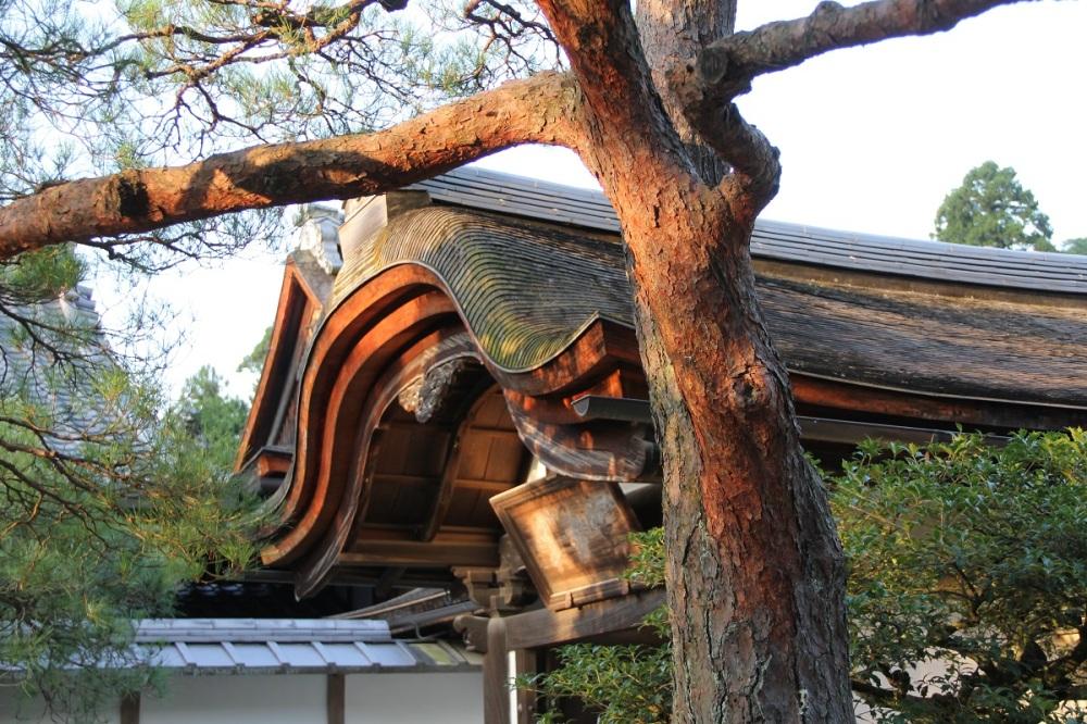 Ginkaku-ji Kyoto Honeymoon BineovesLife