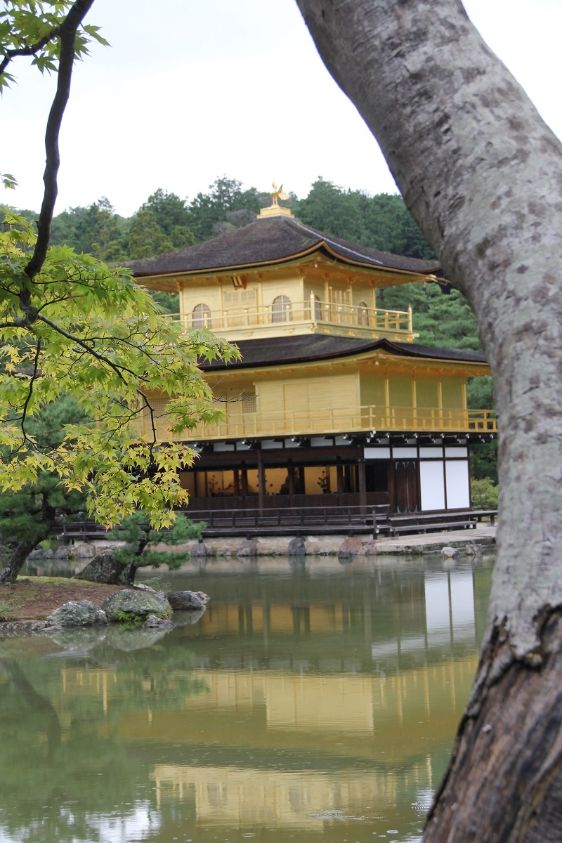 Kinkaku-ji 2016 Kyoto Japan BineLovesLife