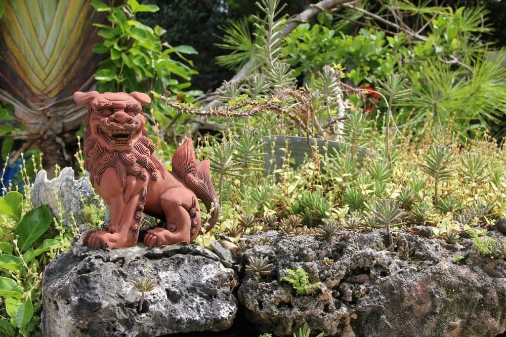 taketomi-island-ishigaki-dragon-bineloveslife