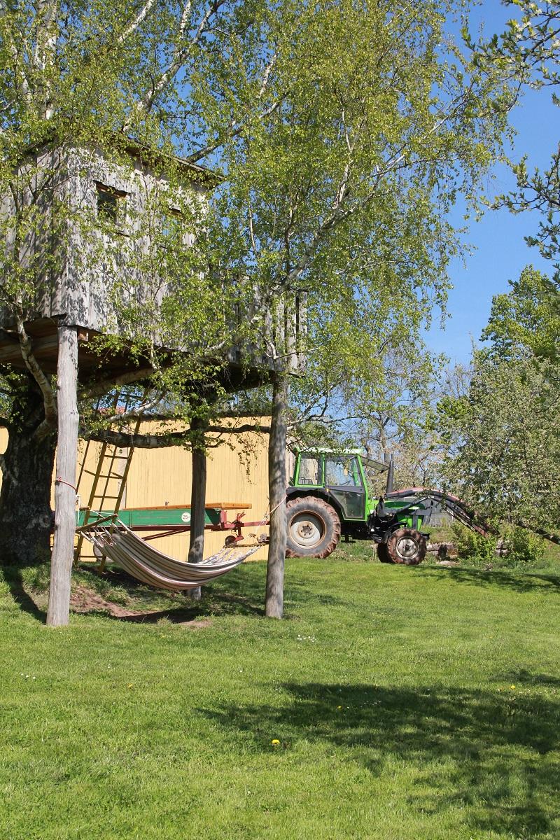 Traktorfahren Bauernhofurlaub BineLovesLife