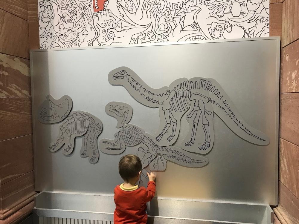 Dinosaurier für Kinder BineLovesLife