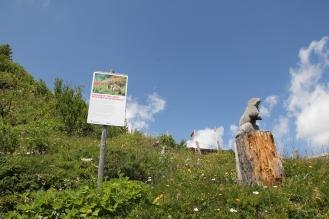 Murmeli Trail Erfahrung TravelTuesday BineLovesLife