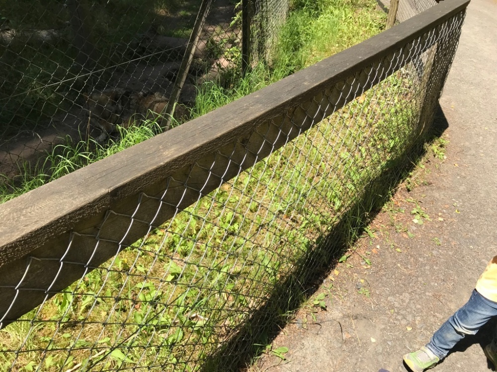Wildpark Hanau Ausflug Regional FamilyFriday BineLovesLife