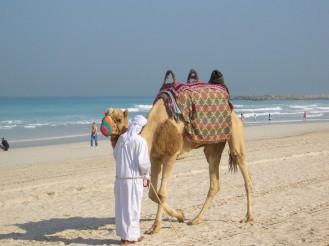Sightseeing Dubai BineLovesLife