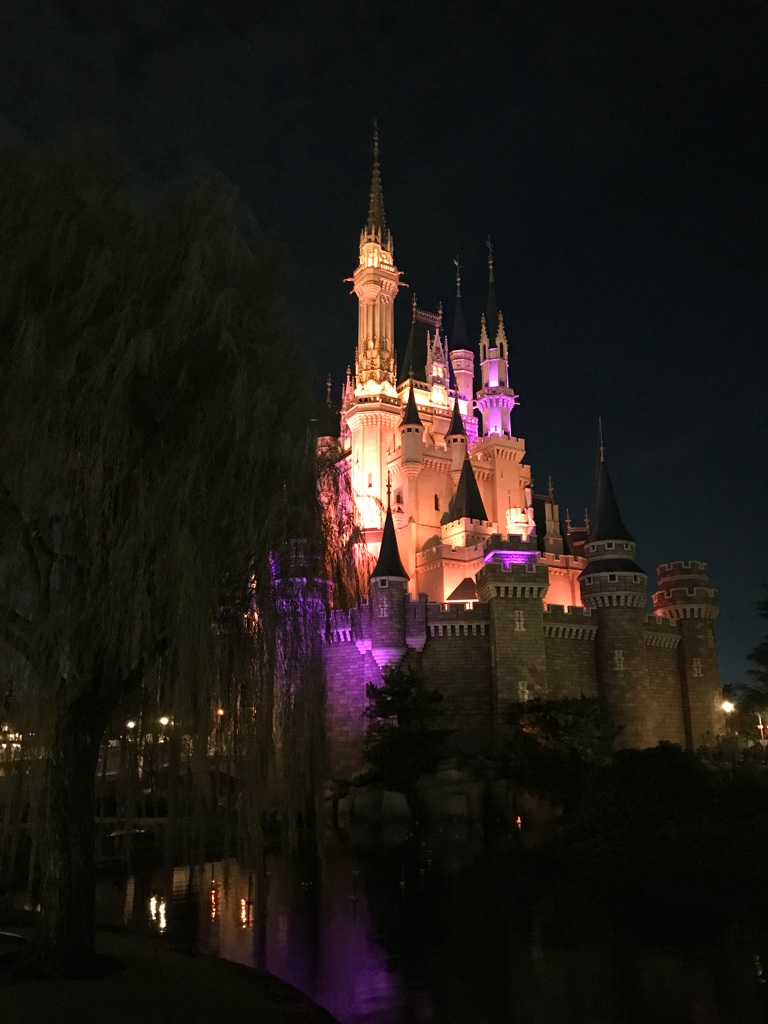 Disneyland Tokyo Princess Castle BineLovesLife