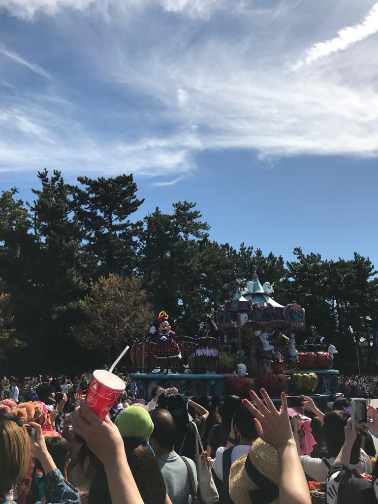 Disneyland Tokyo Show BineLovesLife