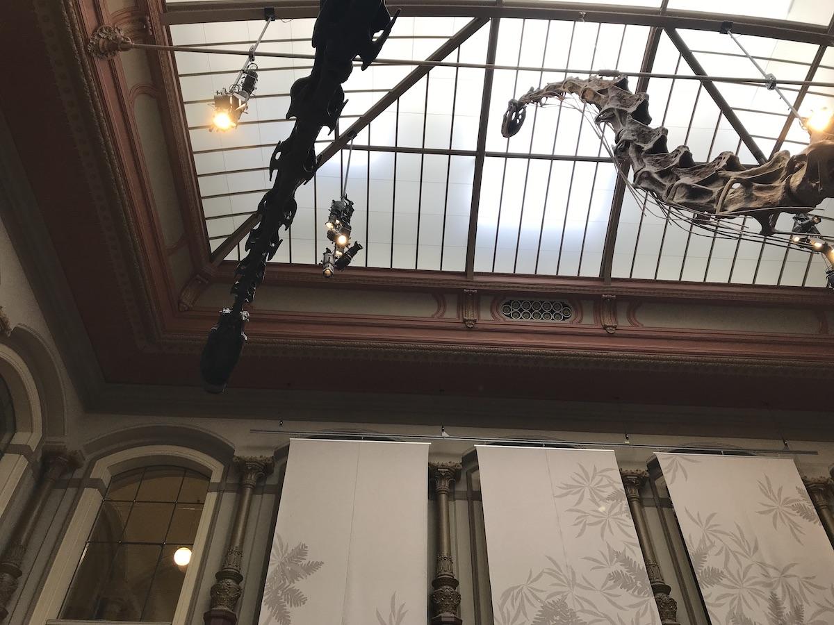 Naturkundemuseum Berlin Dinosaurier Skellet BineLovesLife
