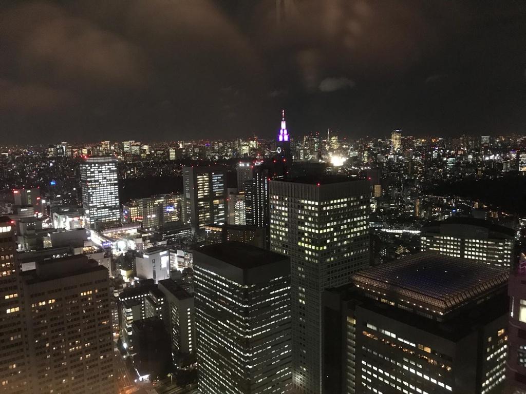 Tokyo Skyline by Night BineLovesLife