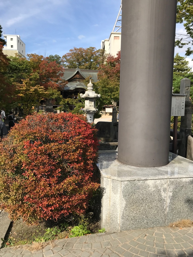 Matsumoto Downtown Temple BineLovesLife