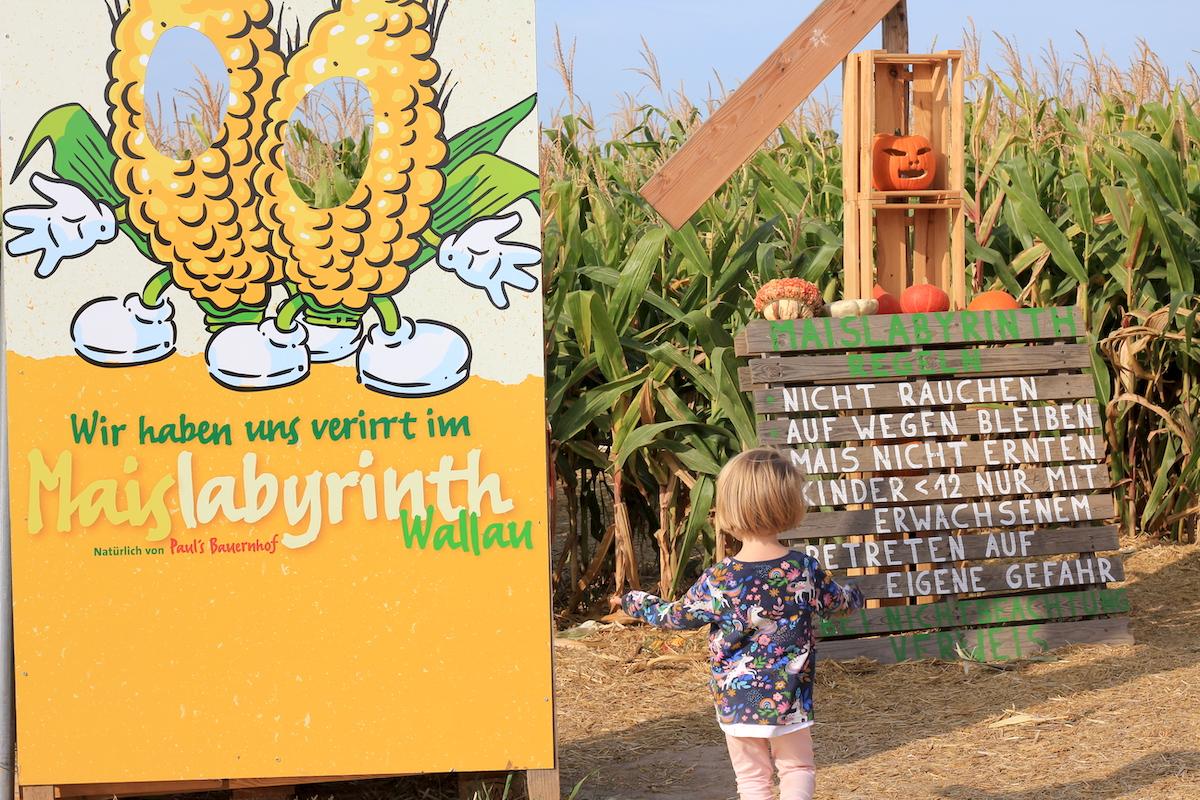 Maislabyrinth mit Kindern BineLovesLife